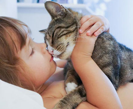 Cat showing affection to a child