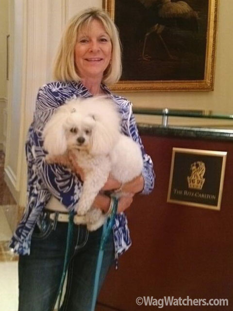 pet-sitter-leigh-palmetto