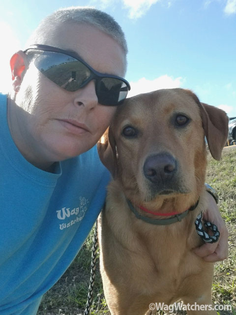 Diann - pet sitter and dog walker in Punta Gorda